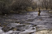 It's time to be thinking about Trout Season 2014