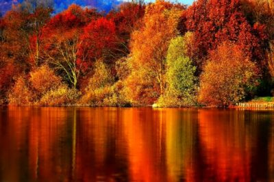 Treasuring the autumn of life and all that it brings